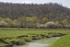 Spring in Istria. The river Mirna is a 53 kilometer long river in Istria offering beautiful landscapes and natural beauty royalty free stock photo