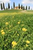 Spring in Italy Stock Photo