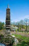 Spring in japanese garden. Pagoda and sakura blossom Stock Image
