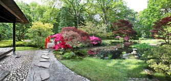 Spring in japanese garden Stock Photography