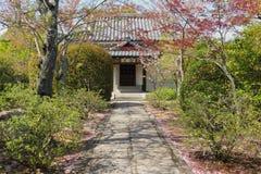 Spring in japanese garden Stock Photos