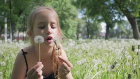 Spring joy - lovely girl blowing dandelion. Beautiful cute girl in sunny day at green nature background. Spring joy - lovely girl blowing dandelion. Beautiful stock footage