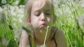 Spring joy - lovely girl blowing dandelion. Beautiful cute girl in sunny day at green nature background. Spring joy - lovely girl blowing dandelion. Beautiful stock video
