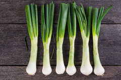 Spring jumbo onion from garden on wooden table Stock Image