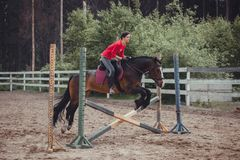 Spring jump horse ride jumping Stock Photography