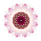Spring kaleidoscope Royalty Free Stock Image