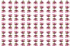 Spring kaleidoscope. On a white background stock illustration