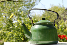 Spring in the kettle Stock Photos