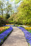 Spring in Keukenhof Royalty Free Stock Photography
