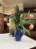 Spring in the kitchen. Vase of tulips on the kitchen table Stock Images