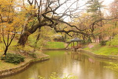 Spring at a Korean Palace Pond Stock Image