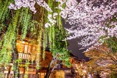 Spring in Kyoto, Japan. Spring foliage in Kyoto, Japan at night Royalty Free Stock Photos