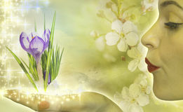 Spring lady vector illustration
