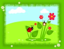 Spring ladybugs Stock Photo