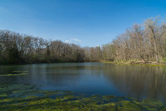 Spring on the Lake. Lake on a beautiful Spring afternoon with brilliant blue skies in background.  Matthiessen State Park, Utica, Illinois Stock Images