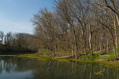 Spring on the Lake. Lake on a beautiful Spring afternoon with brilliant blue skies in background.  Matthiessen State Park, Utica, Illinois Stock Image