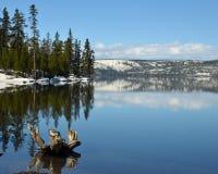 Spring lake royalty free stock photo