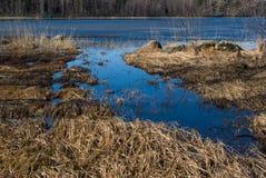 Spring landscape. Vuoksi river in Leningrad oblast, Karelian Isthmus Royalty Free Stock Photo