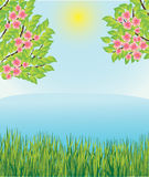 Spring landscape Stock Image