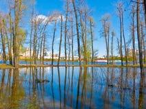 Spring landscape royalty free stock image