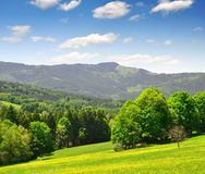 Spring landscape. In the national park Sumava - Czech Republic Stock Photo