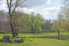 Spring Landscape Royalty Free Stock Photography