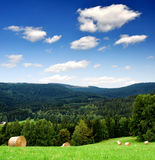 Spring landscape. In the national park Sumava - Czech Republic Royalty Free Stock Image