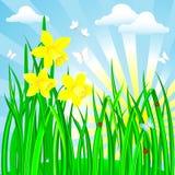 Spring landscape. Stock Photography