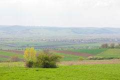 Spring landscape. A beautiful spring landscape on a cloudy day Royalty Free Stock Photography