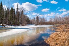 Spring Landscape Stock Photos