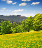 Spring landscape. In the national park Sumava - Czech Republic Stock Photos