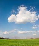 Spring landscape Royalty Free Stock Images