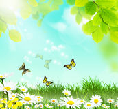 Spring landscape. With butterflies and flowers Royalty Free Stock Photo