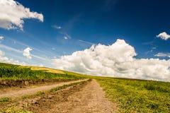 Free Spring Landscape Stock Image - 46950471