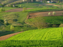 Spring landscape. With cultivated land in front Royalty Free Stock Photography