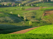 Spring landscape. With cultivated land in front Stock Images