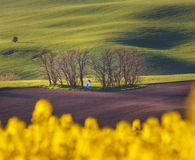 Spring landscape with amazing chapel in green fields at sunset Royalty Free Stock Photo