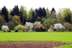 Spring landscape in Anyksciai district in Lithuania Royalty Free Stock Photos