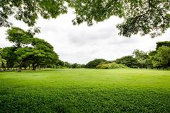 Spring landscape background Stock Images