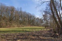 Spring landscape in bavaria Stock Images
