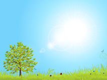 Spring landscape with blue sky Royalty Free Stock Photos