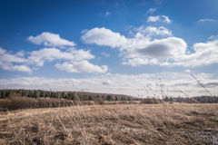 Spring landscape. Blue sky with clouds Royalty Free Stock Photography