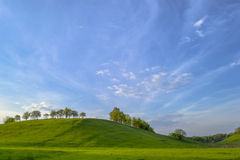 Spring landscape with blue sky, green grass and blooming trees. Stock Photos