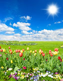 Spring landscape with blue sunny sky Royalty Free Stock Images