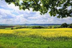 Spring Landscape in Bohemian Paradise, Czech Republic Stock Images