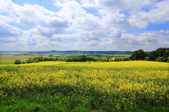 Spring Landscape in Bohemian Paradise, Czech Republic Stock Photo