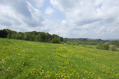 Spring Landscape in Bohemian Paradise Royalty Free Stock Photo