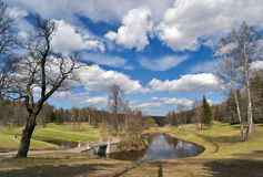 Spring landscape with the bridge Royalty Free Stock Photo