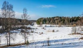 Spring landscape. Stock Image