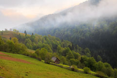 Spring landscape in the Carpathian mountains Stock Photography